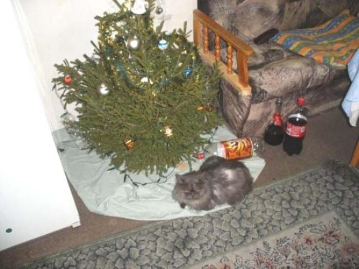ЧЕСТИТО Рождество на вси православни българи!