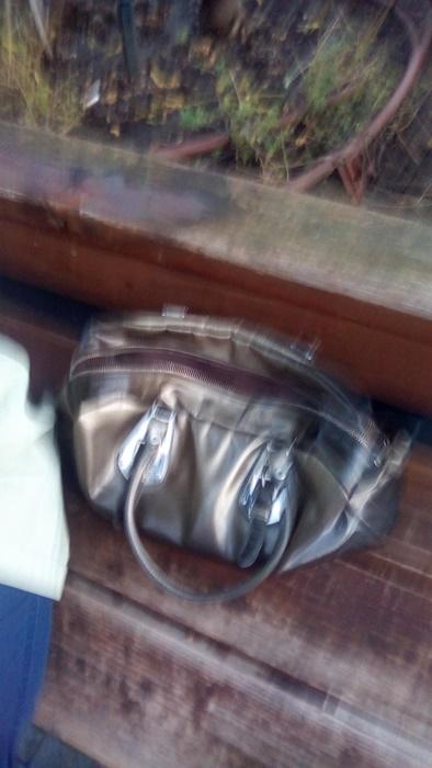 ВАРНЕНСКА журналистка даде на МВР чанта с 620 лв