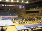 СВЕТОВНА Купа: Имало едно време... българска спортна гимнастика